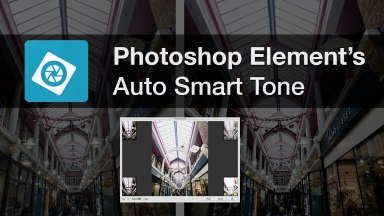 Photoshop Element's Auto Smart Tone