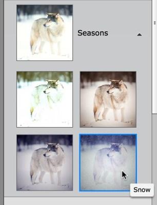 snow_photoshop_elements_04
