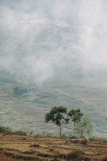 Fog in Sapa, Vietnam