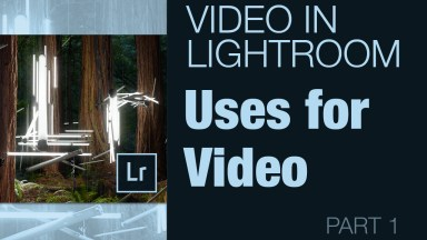 Uses for Video in Lightroom