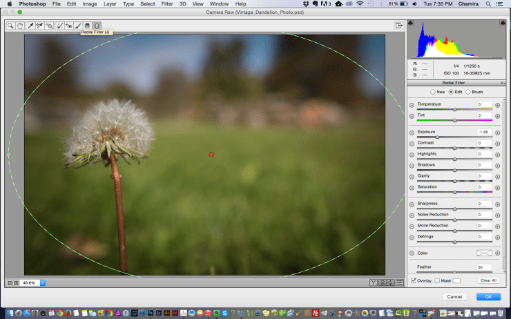 The camera raw filter view.