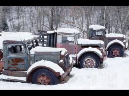Three Trucks_Gottlieb