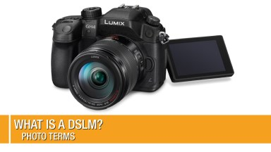 What is a DSLM?