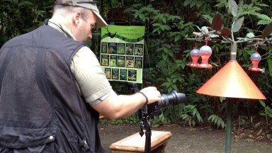 Exploring Travel Photography: Photographing Hummingbirds (CR07)
