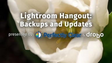 Lightroom Hangout: Backups & Updates with Mark Fuccio