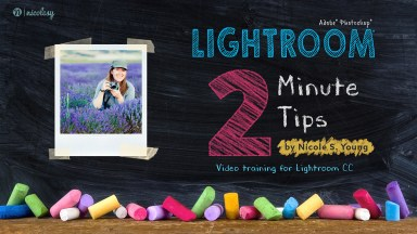 Lightroom 2 Minute Tips from Nicolesy — Reviewed