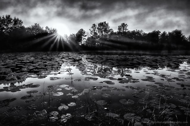 Black and White at First and Last Light