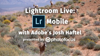 Lightroom Live: Lightroom for Mobile with Josh Haftel