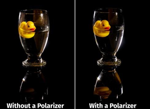 rubber-ducky-pol-vs-unpol