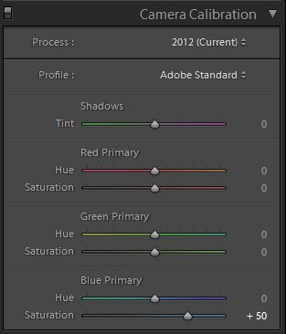 """Profile Version"", found on the ""Camera Calibration"" panel, in Lightroom Develop."