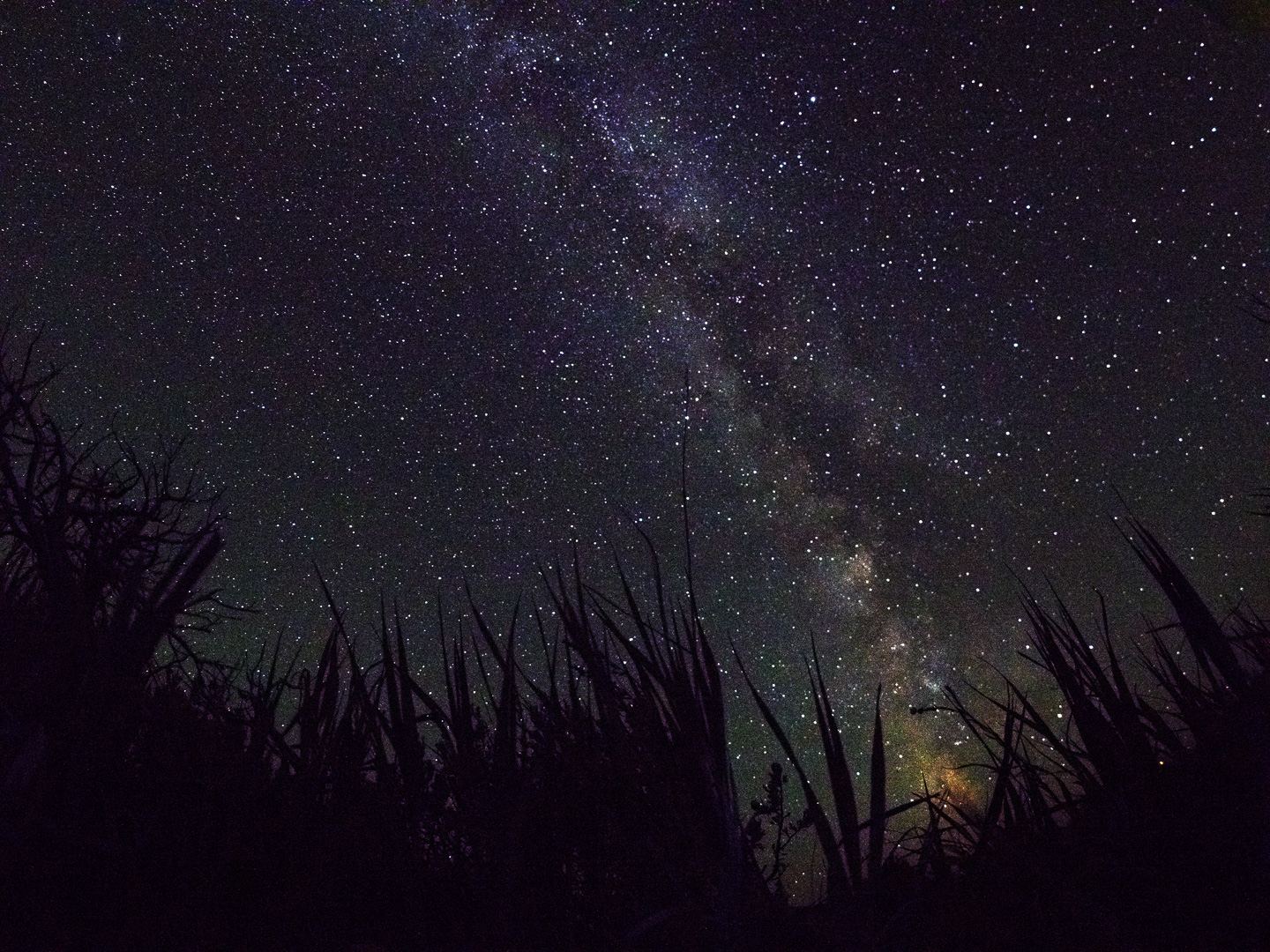 Mirrorless Camera Maniac: Tips For Shooting The Milky Way