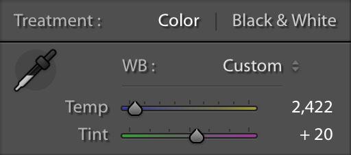 Basic White Balance Adjustments.