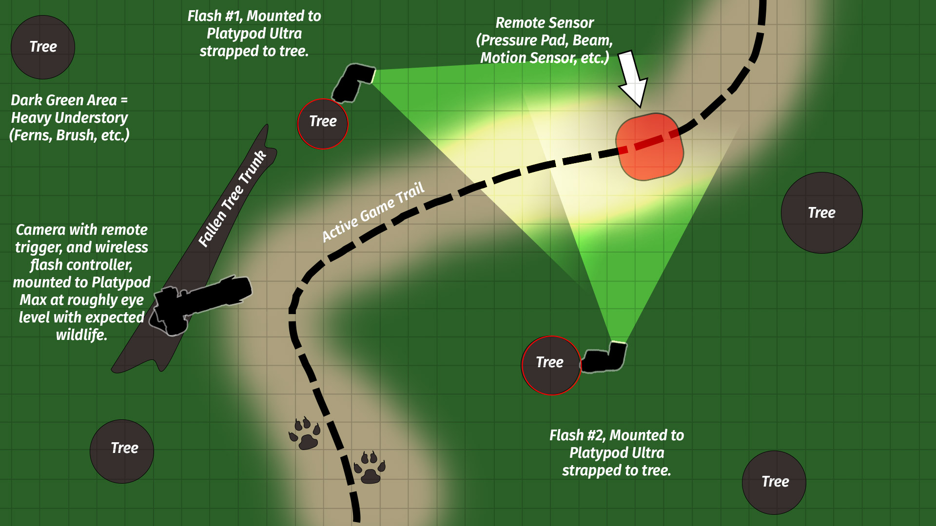 Get Ready To Remote Part 2 Advanced Camera Traps Photofocus Trap Diagram The Elements Needed For A Nighttime Photo