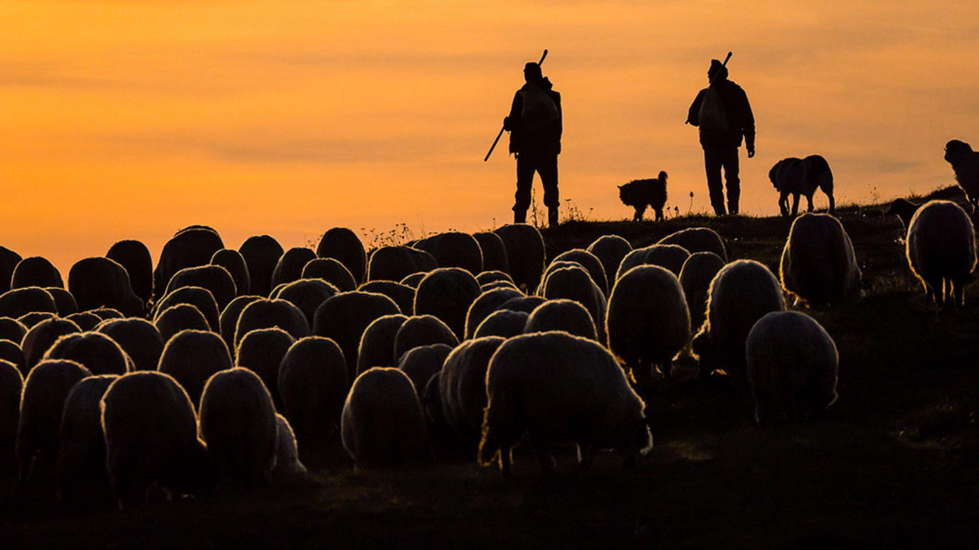 Ryszard Domański Photographer of the Day Travel