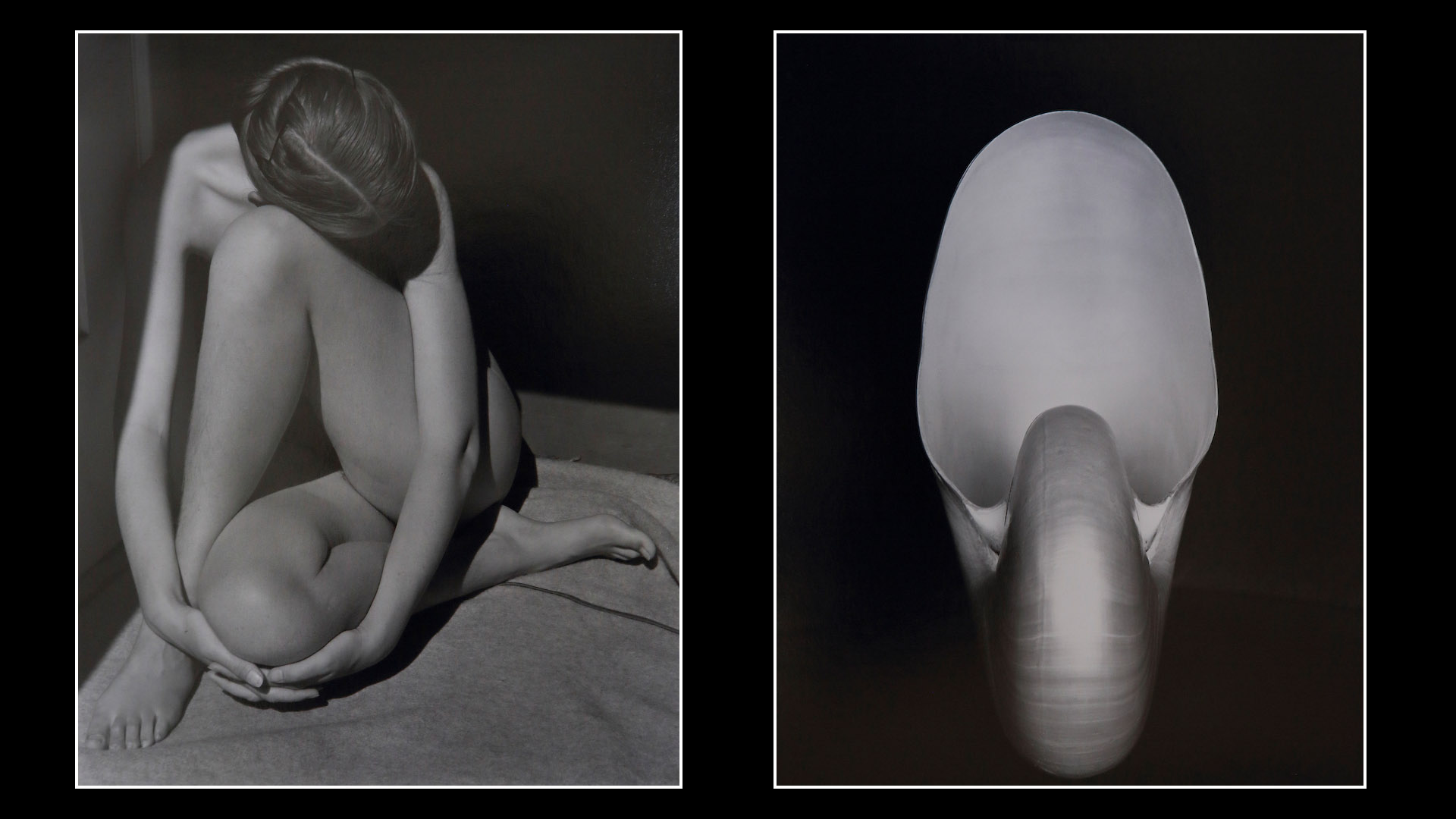 Edward Weston: Nude 1935 and Shell 1927