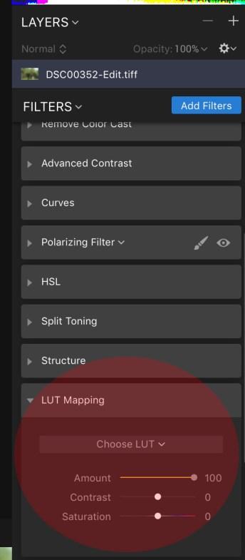 Luminar Screen Shot LUT Mapping