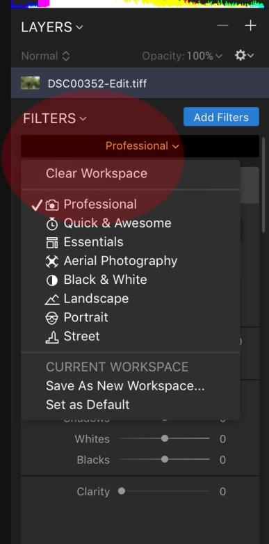 Luminar Screenshot Professional Mode