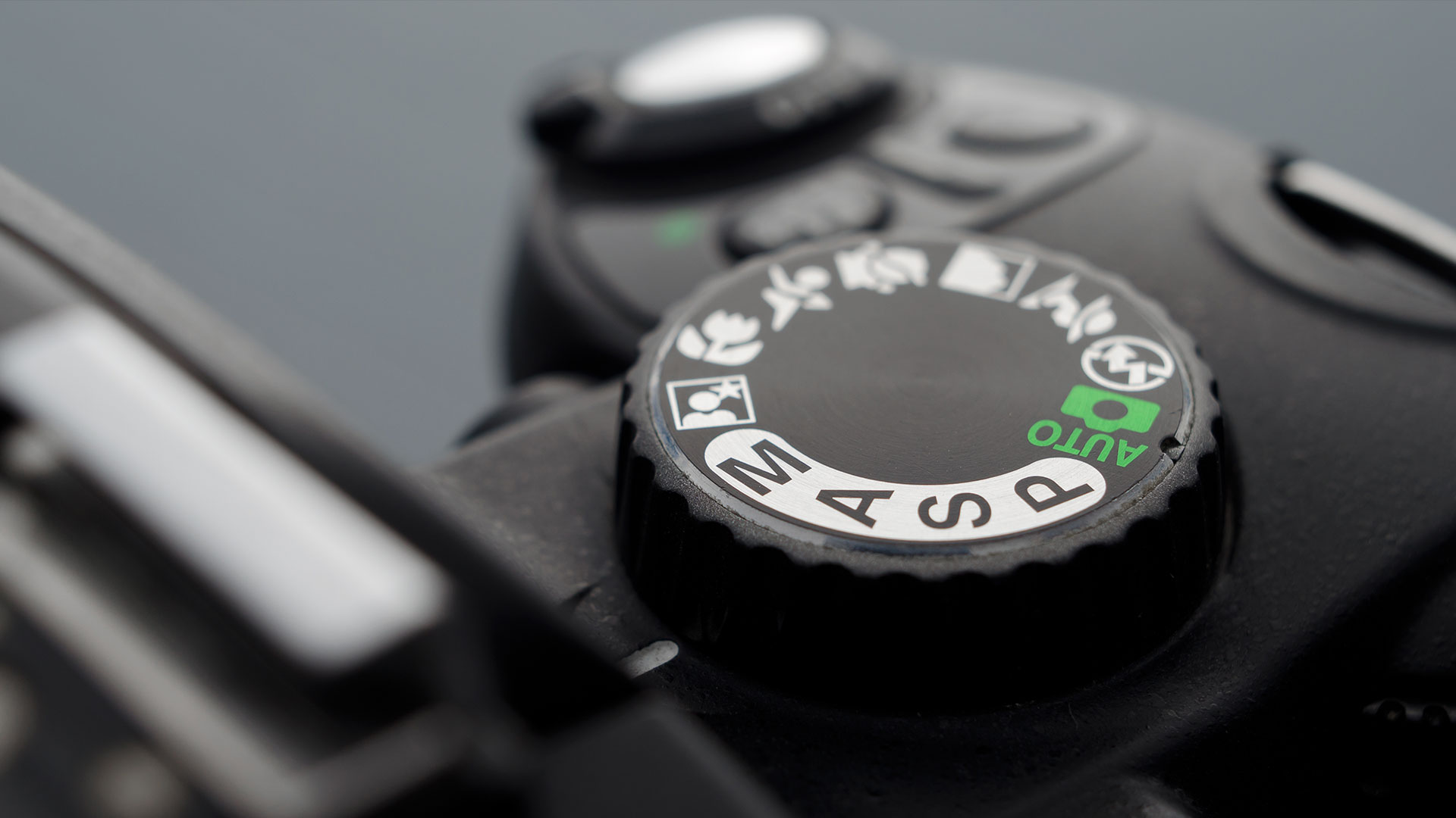 Getting started with your new camera: A for Aperture Priority | Photofocus
