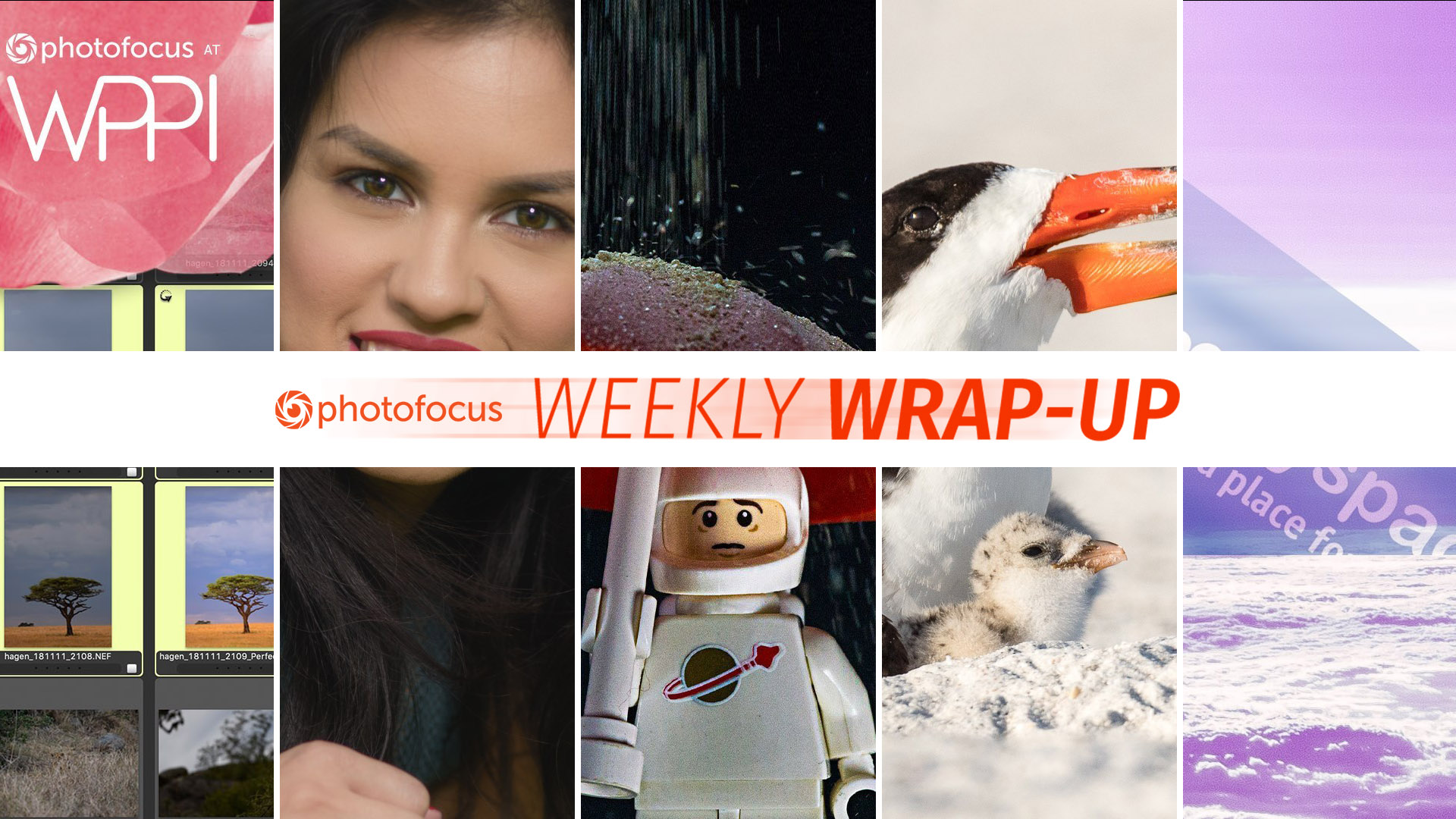 Photofocus Weekly Wrap Up photos for the week ending March 23, 2019