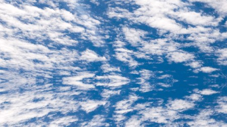 Can free cloud storage be trusted?