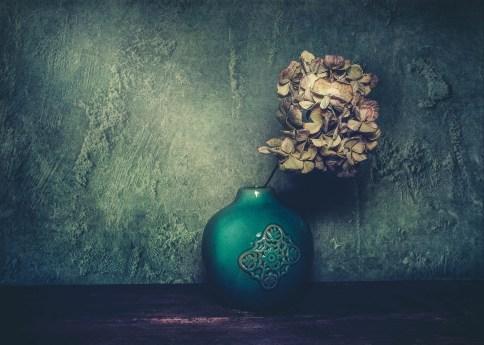 Julie Powell_flowers-16