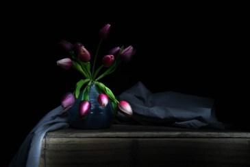Julie Powell_styling-13