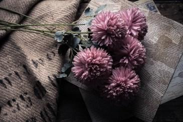 Julie Powell_styling-4