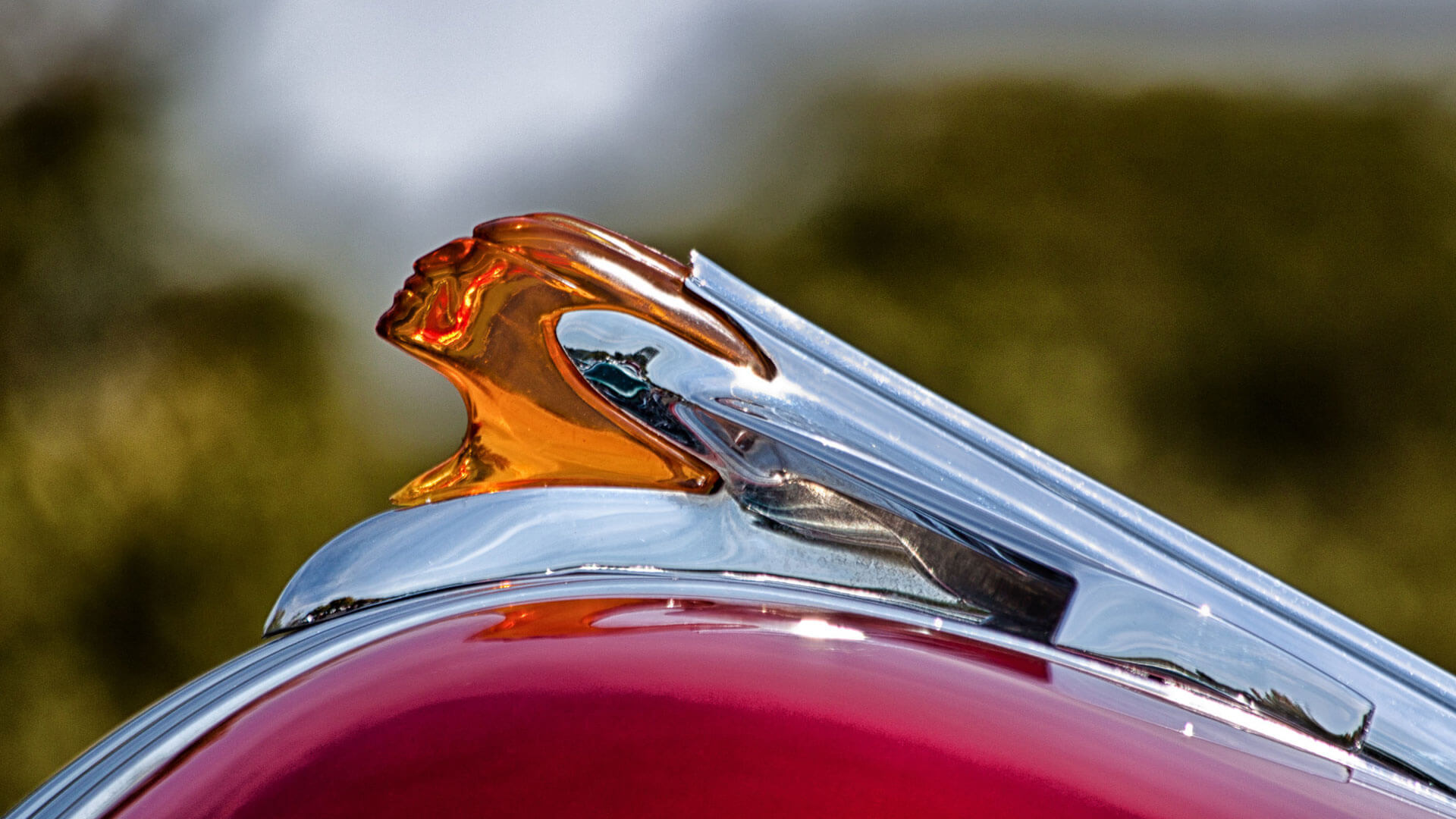 photographing car shows