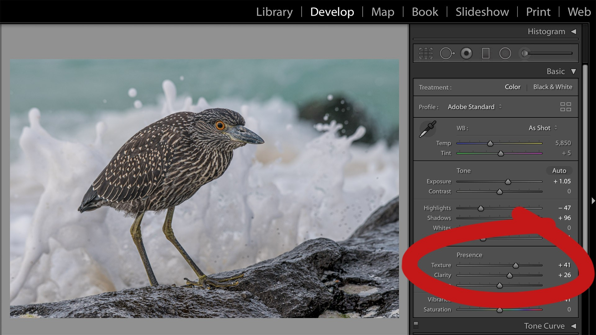 Using the texture slider in Lightroom Classic