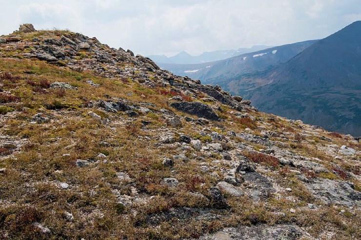 Alpine Ridge Trail, Rocky Mountain National Park, Colorado ISO 100; 1/1600 sec.; f/4.0; 17mm
