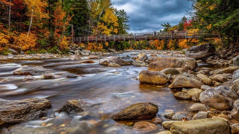 Fall | Photographer: Ian LewryCurator: Bryan Esler