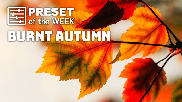 Free Preset of the Week – Burnt Autumn
