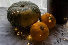 Julie Powell_NL Pumpkins-06755