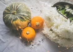 Julie Powell_NL Pumpkins-06757