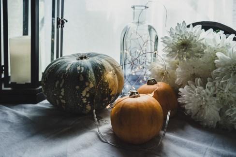 Julie Powell_NL Pumpkins-06771