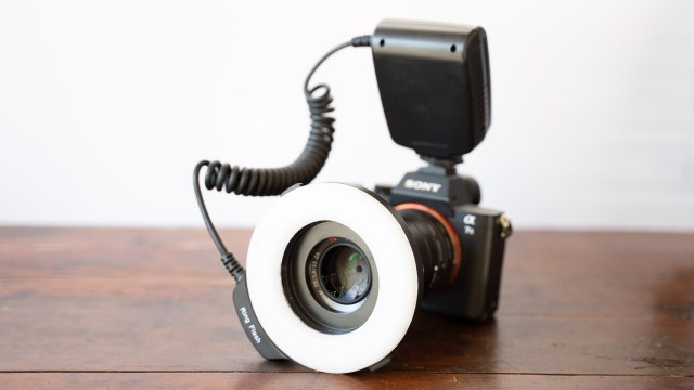 Taking a look at macro ring lights