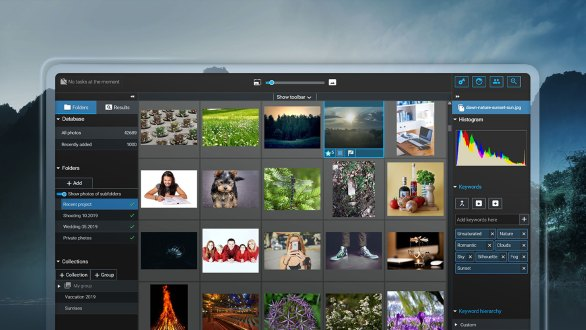 Excire Foto released: The perfect companion to search your photos