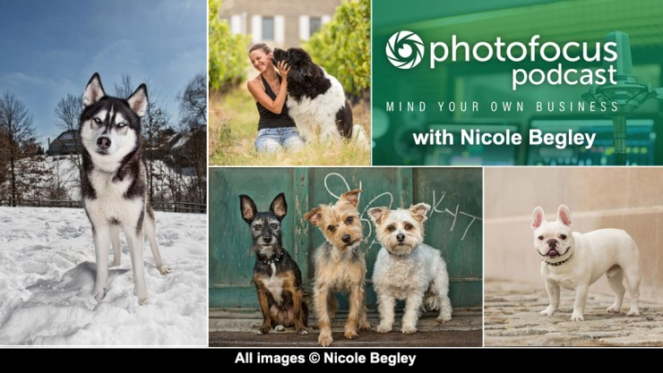 All images copyright Nicole Begley Photography