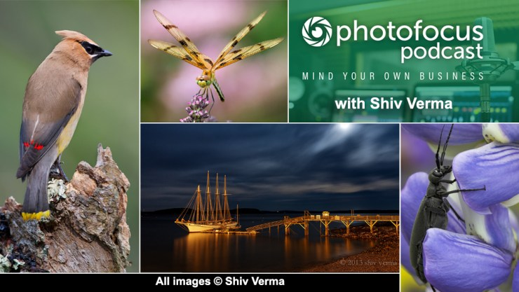 Photos copyright Shiv Verma