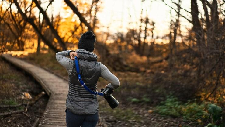 Fall walk nature camera