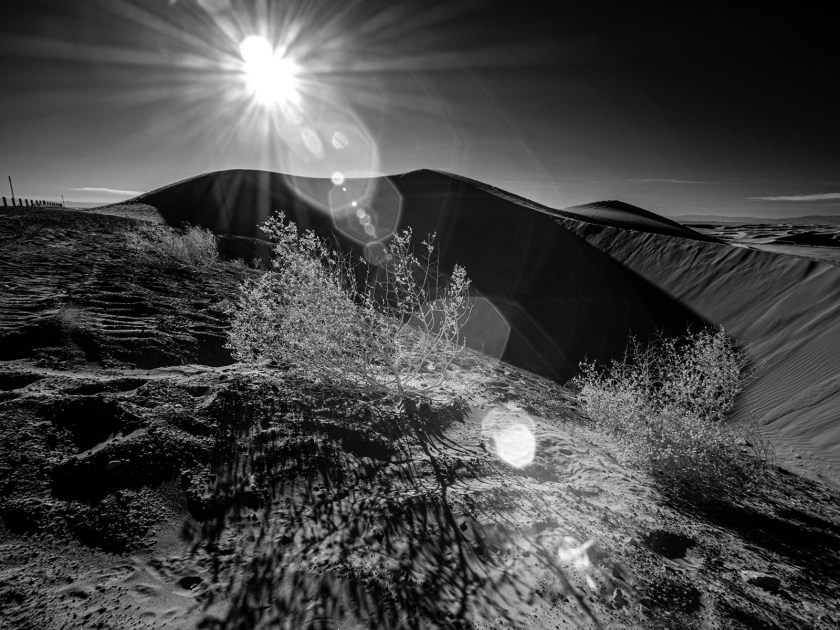 infrared photo imperial sand dunes