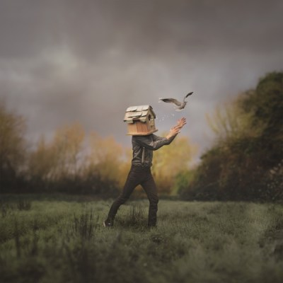 Catch And Release - Copyright Joel Robison