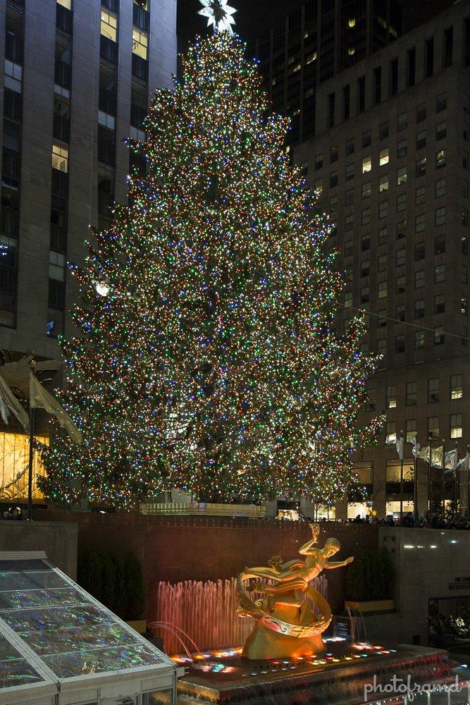 2013 Tree Rockefeller Center Xmas