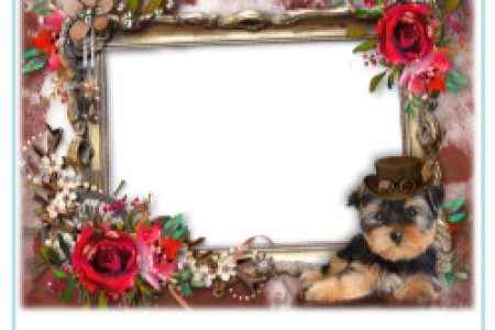 photofunia rose flower frames photofunia birthday cake with photo ...