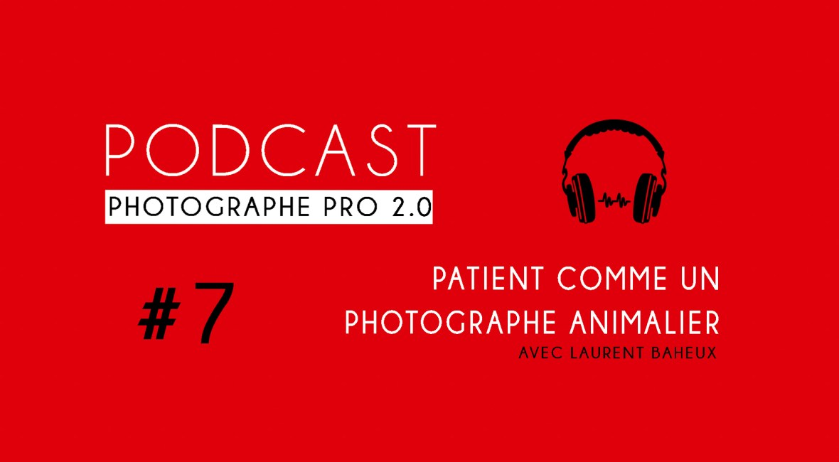 P7 laurent baheux animalière podcast photographe pro