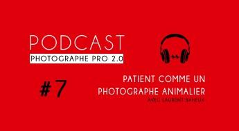 P7 laurent baheux animalière podcast photographe pro