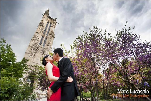 cerisier en fleur photo couple Paris