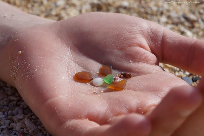 """Glass and Shells"" Photograph"