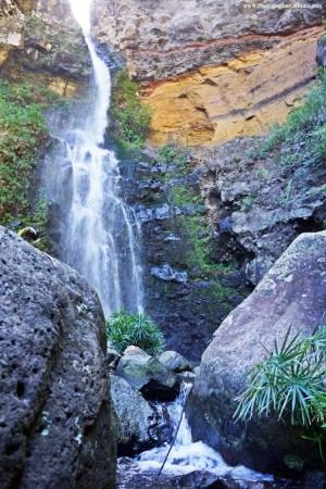 Maui Waterfall Hike