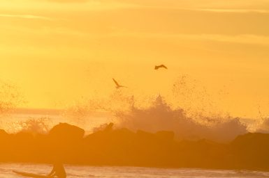 Photographers of Las Vegas - Concept Photography - California ocean sunset with surfer and seagulls